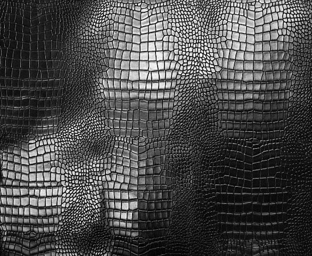 Krokodil mintás műbőr